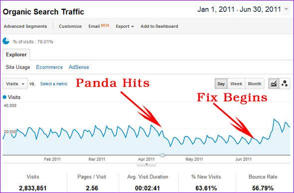 google-panda-hit