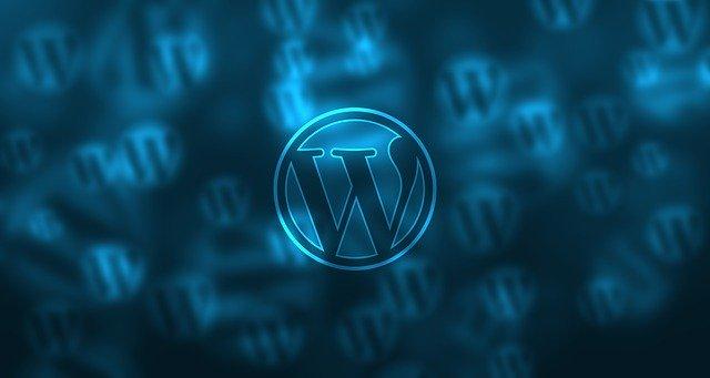 Web Developers Prefer WordPress
